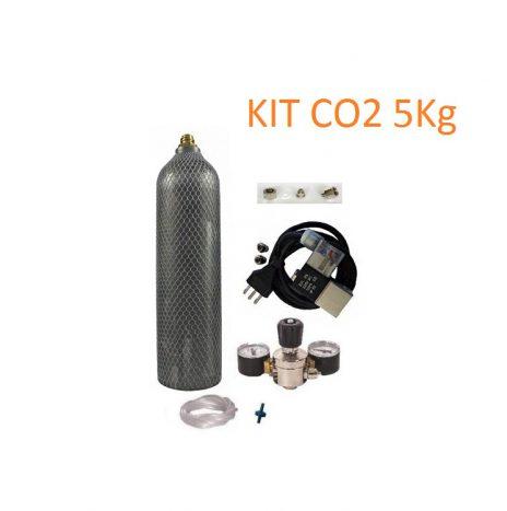 Kit CO2 Professionale 5Kg con Riduttore, Due Manometri, Elettrovalvola e Tubo