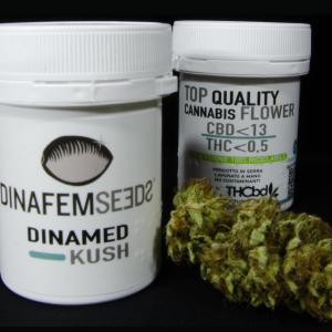 Cbd 10,15% Thc 0,42% Infiorescenze di Cannabis Light by THCbd.