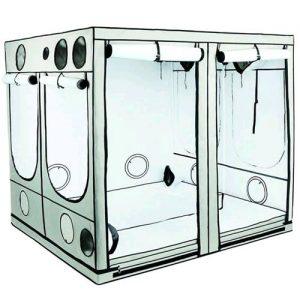 Homebox Ambient Q300
