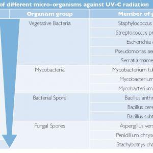 UV-C CleanLight