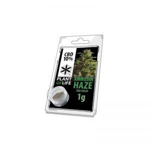 Plant of Life CBD Hashish hash