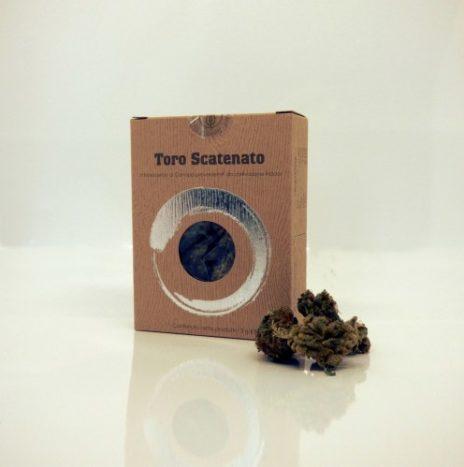 Green Lab Italia TORO SCATENATO 3gr Infiorescenze di Cannabis Light CBD 12%