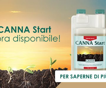 Finalmente è disponibile anche in Italia CANNA Start!