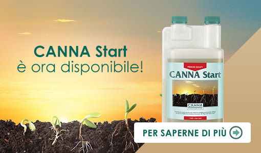 Finalmente è disponibile anche in Italia CANNA Start!