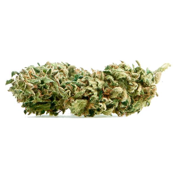 cannabe-holy-weed-infiorescenze-di-canapa~Img_Principale_37027