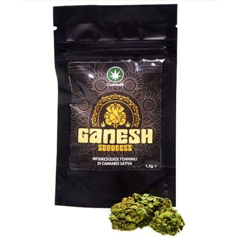 CannaBe GANESH Cannabis Light Seedless Cbd 9%