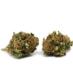 Mary Moonlight Shading Spirit 3gr Cannabis Light Seedless Cbd 13%