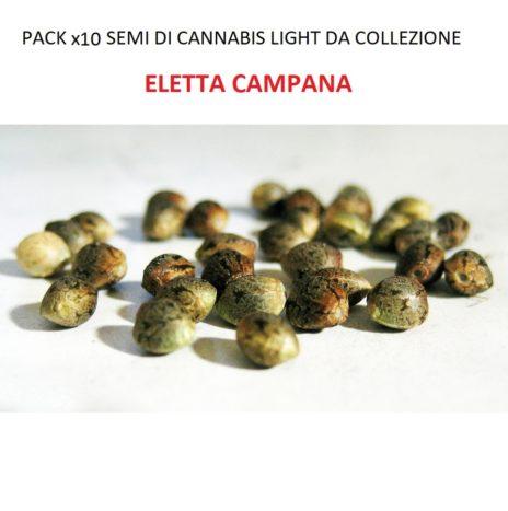 Pack x10 Semi di Cannabis Light da Collezione Varietà ELETTA CAMPANA