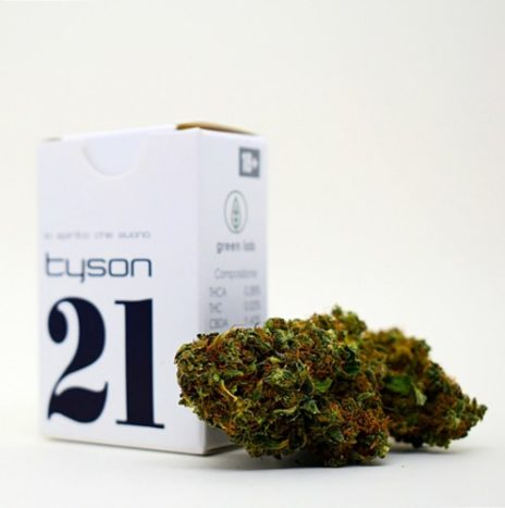Green Lab 21 TYSON 1gr Infiorescenze di Cannabis Light CBD 9%