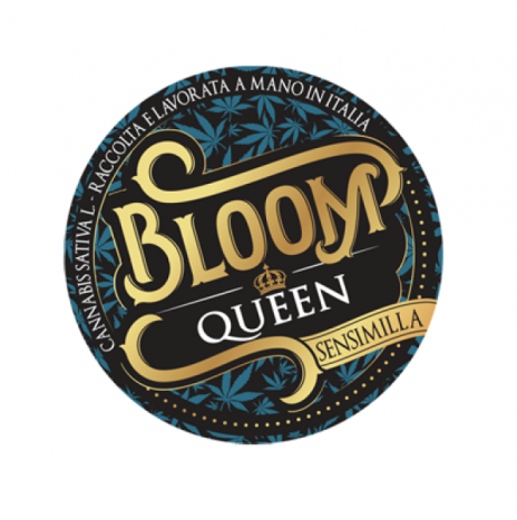 CanapaLife Bloom Queen Cbd 10% Sinsemilla 3gr Infiorescenze di Cannabis Sativa L.