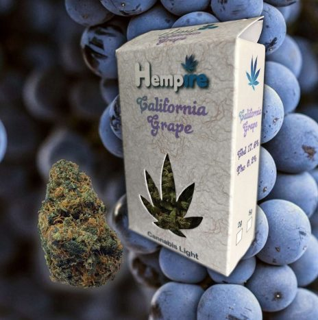 Hempire CALIFORNIA GRAPE Cbd 17,6% Infiorescenze di Cannabis Light
