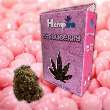 Hempire STRAWBERRY Cbd 19,5% Infiorescenze di Cannabis Light